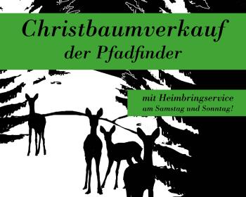 Christbaumverkauf der Pfadfinder